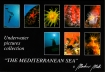 The Mediterranean Sea - Collection 2 Martino  MOTTI