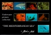 The Mediterranean Sea - Collection. 1 Martino  MOTTI